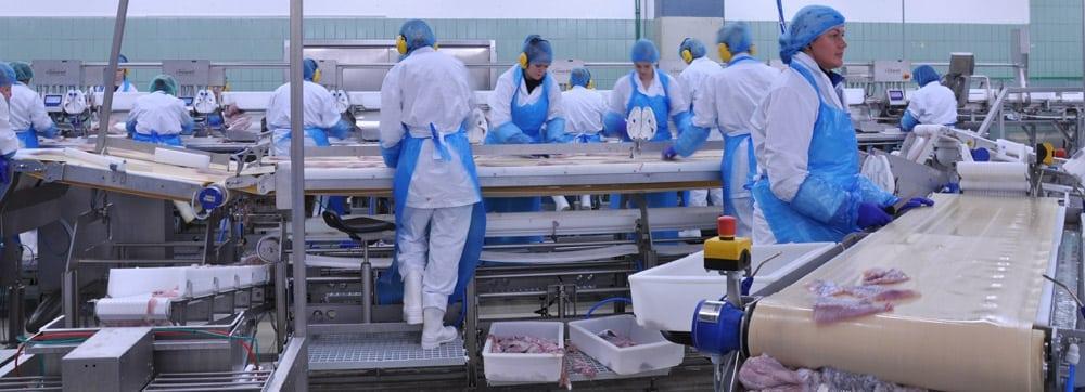 injuries in food processing plants