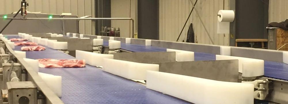 sanitary conveyor design